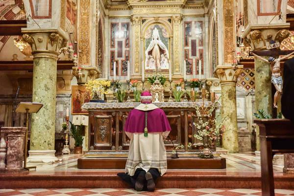 Atto di affidamento alla Madonna di Monte Berico: il testo e le foto